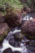 Cascades on Grant Creek