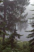 Fog at Golden Lakes on the Wonderland Trail
