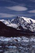 Icebergs from the Columbia Glacier in Prince William Sound