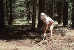 Building New Trail in the Arizona Mountains