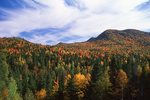 Autumn in the Notre-Dame Mountains, Gaspe Peninsula