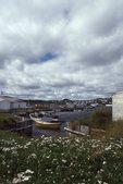 The Ferryland Harbor