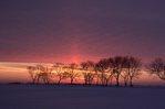 A Winter Sun Pillar at Sunset