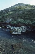 The Aichilik River Leaving the Brooks Range for the Arctic Coastal Plain