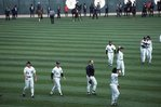 White Sox Players Salute the Fans after the Final Game at Old Comiskey Park, September 30, 1990