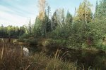 The Headwaters of the Wisconsin River