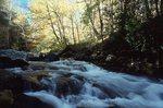 The Oconaluftee River