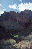 Springtime in Boucher Canyon