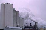 The GW Sugar Plant