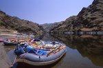 Rafts on the Snake River at Upper Cottonwood Creek