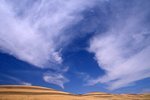 Cirrus Clouds over Wheat Fields