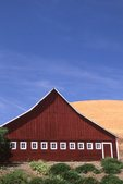 A Barn and Wheat Field in the Palouse Hills
