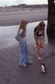 Little Girls with a Common Murre