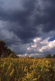 Storm Clouds over an Illinois Prairie