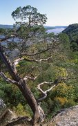 The Mississippi River, from Hanging Rock
