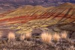 Grasses at the Painted Hills, Late Afternoon