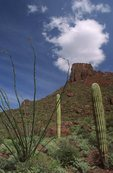 A Cloud over the Ajo Mountains