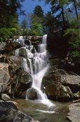 Ramsey Cascades