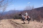 A Young Woman Rides in Spence Field on the Appalachian Trail