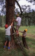 Forest Service Workers Installing a Trail Sign in Eastern Arizona