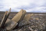 The Severe Terrain of Bathurst Island