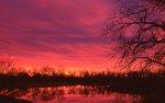 Winter Sunrise on the Platte River