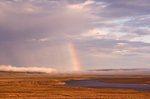 Arctic Midnight: The Thomsen River