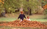 Kids Playing in a Leaf Pile