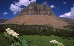 Pollock Mountain from Logan Pass