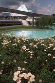 A Garden at Epcot Center