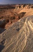 The Muddy River Valley and the San Rafael Swell