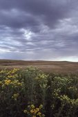 Storm Clouds over the Northern Plains