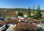 Bear Rocks with flag form red spruce trees, Dolly Sods Scenic Area