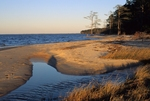 Shore of the Neuse River near beginning/end of Neusiok Trail