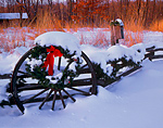 Holiday decorations and fresh snow on a wagon wheel and split rail fence.  Tall grass prairie and winter forest in the background.