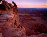 Evening light on the Kayenta Sandstone rim of Dead Horse Point with a view of Canyonlands National Park