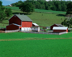 Red barn and dairy farm buildings in green summer fields
