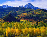 Mount Sneffels towers above autumn colored aspens in the valley of East Dallas Creek