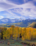 San Juan mountains above autumn colored aspen grove in the valley of East Dallas Creek