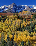 Gold aspen (Populus tremuloides) groves cover foothills under the San Juan range