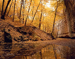 Sandstone wall of Ottawa Canyon &amp; fall colored reflections