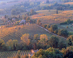 Patchwork of vineyards and olive orchards in the rolling Tuscan countryside at Montepulciano
