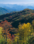 Early fall colors in the upper elevations of the Smoky Mountains with Deep Creek Valley in the distance