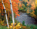View of the Black River flowing through a hardwood forest in fall color