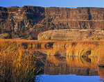Basalt cliffs of the Grand Coulee at Dry Falls with golden reeds reflecting on the shore of Dry Falls Lake
