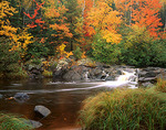Small falls on the Black River with grasses and hardwood forest in fall color