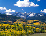 The San Juan Range towers above fall colored aspens in the valley of East Dallas Creek in Uncompahgre National Forest, CO