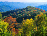 Early fall colors in the upper elevations of the Smoky Mountains with Deep Creek Valley in the distance in Great Smoky Mountains National Park, TN