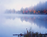 Vilas County, WI: Forested shoreline in autumn colors revealed through morning fog on Little Bass Lake, North Highland American Legion State Forest