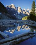 Banff National Park, Canada: Raft of logs and driftwood jammed at the foot of Moraine Lake under the Wenkchemna Peaks of the Canadian Rockies